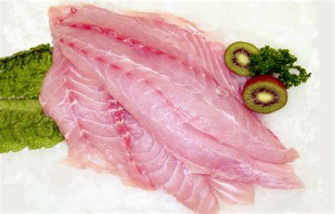 grouper fish fillets snapper fillet fresh jerky aquaculture filet filets information indonesia lebanese enlarge mokbel international