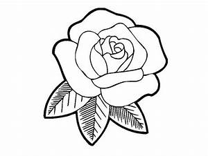 Printable Rose Coloring Pages for Kids — FITFRU Style