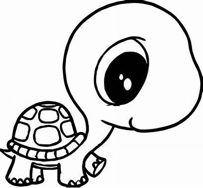 Turtle Head Drawing Coloring Ninja Clipartmag