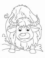 Yak Coloring Pages Baby Printable Yawning Cartoon Getcoloringpages sketch template