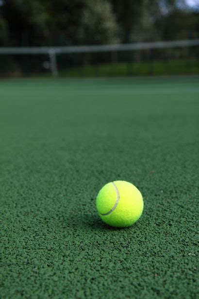 tennis ball  stock photo public domain pictures