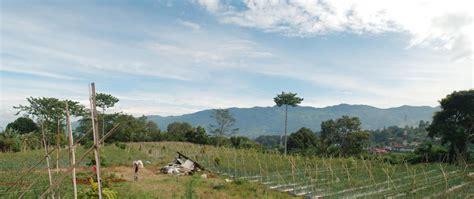 villa banyu gunung puncak cisarua akomodasi  view