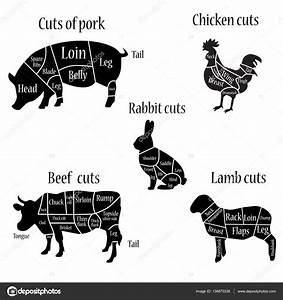 Butcher Chart Diagramm  U2014 Stock Photo  U00a9 Viktorijareut