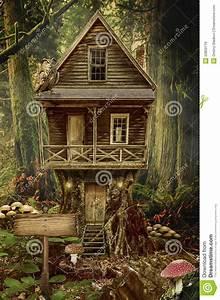 house stump stock illustration illustration of
