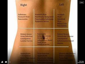 Stomach Pain Quick Guide  The Common Areas Of Pain And