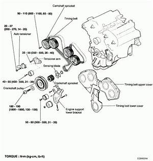 2005 Kia Sedona Engine Diagram 24882 Getacd Es