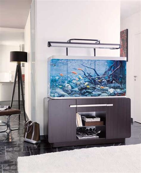 20 modern aquariums for cool interior types decorazilla design