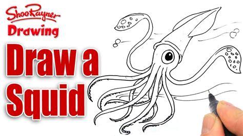 draw  squid youtube