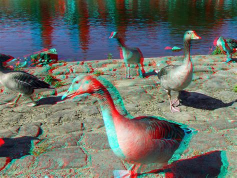 3d Picture by 3d Cyan Anaglyph Pirna G 228 Nse An Der Elbe