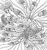 Peacock Coloring Coloring2print sketch template