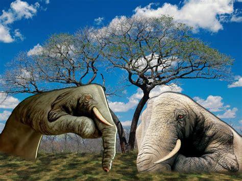 Contoh gambar ilustrasi tangan berujud binatang dengan