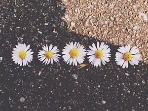 photography tumblr hipster - Buscar con Google ...