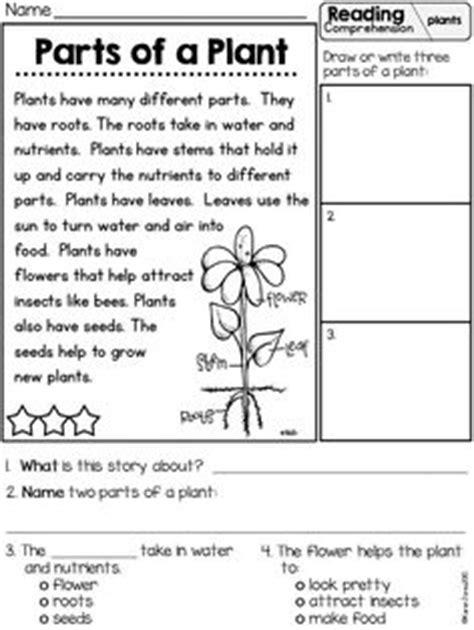 Plants Unit Plan For K1