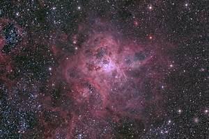 APOD: 2014 February 17 - The Cosmic Web of the Tarantula ...
