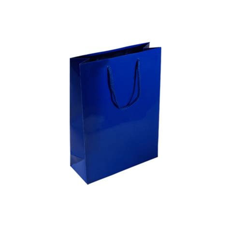 Large paper gift bags with handles