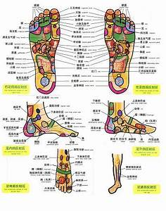 Free Printable Reflexology Charts