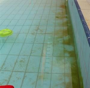 Braune Ablagerungen Im Pool : pool check zehn eklige hotel pools im sonnigen s den bilder fotos welt ~ Markanthonyermac.com Haus und Dekorationen