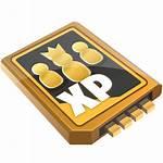 Fortnite Xp Survivor Icon Xbox Royale Battle