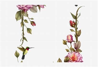 Flower Border Clipart Seekpng