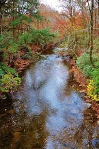 Blue Ridge Mountain Stream