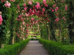 HD Garden Wallpapers 1444