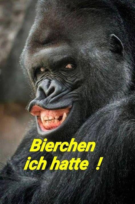 bier lustig witzig sprueche bild bilder gorilla bierchen