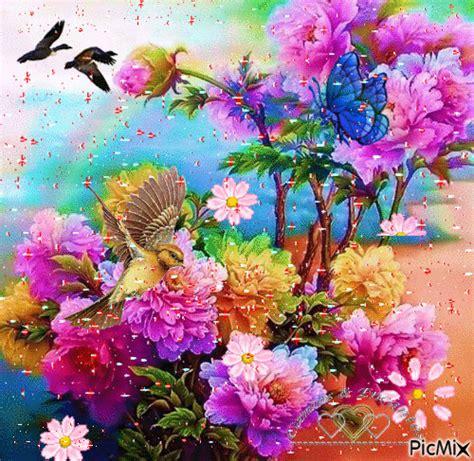 Imagenes bonitas12Images Download