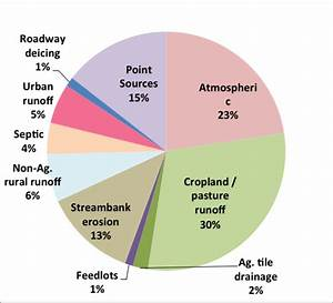 Nutrient Pollution Diagram
