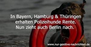 Positive Bewertung Schreiben : polizeihunde erhalten rente positive nachrichten ~ Buech-reservation.com Haus und Dekorationen