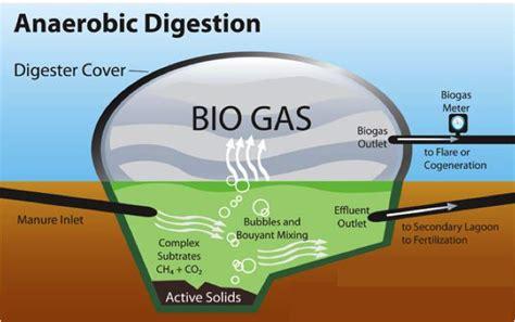 cuisiner au gaz ou à l électricité biogaz eternal word ministrieseternal word ministries