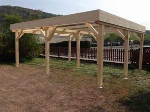 Carport 2 Voitures Bois : abriboa abri carport toit plat 2 voitures ~ Dailycaller-alerts.com Idées de Décoration