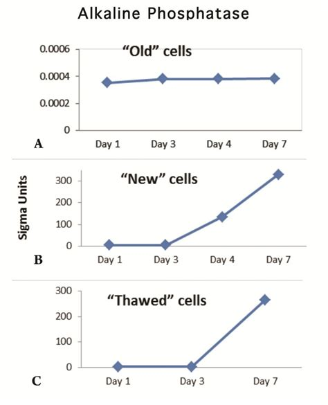 a characterization of three groups of mc3t3 e1 pre osteoblastic cells to aid in testing of