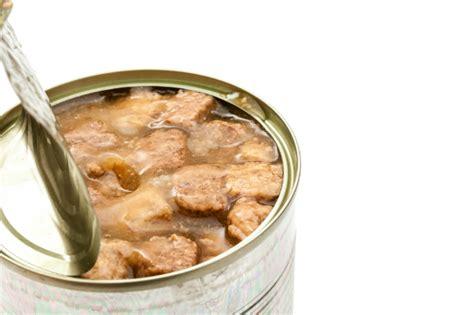 trockenfutter oder nassfutter hunde kausnacks magazin