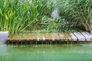 Garten Und Wasser : wasserspiele teiche zinsser gartengestaltung ~ Sanjose-hotels-ca.com Haus und Dekorationen