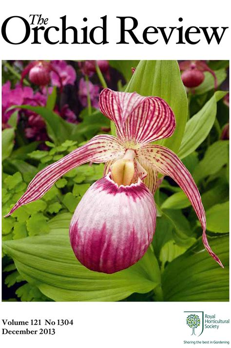 Download Articles From The Orchid Review  Rhs Gardening
