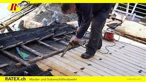 Marder Vertreiben Dach : marder und siebenschl fer vertreiben youtube ~ Yasmunasinghe.com Haus und Dekorationen