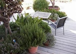 Haus Gestalten Spiele : hang nutzen eine sonnige stufenterrasse anlegen ~ Lizthompson.info Haus und Dekorationen