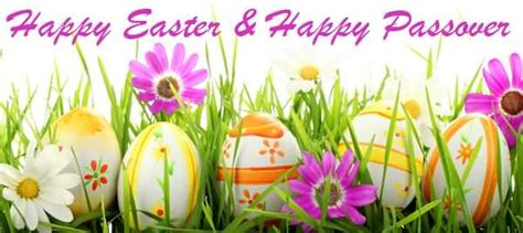 beautiful passover greeting pictures  images