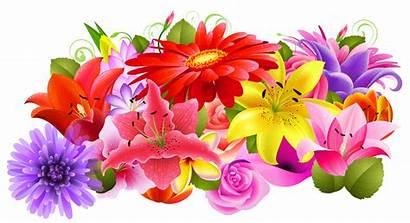 Floral Clipart Flower Flores Transparent Elements Decorative