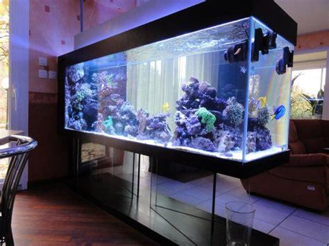 aquarium eau de mer fish only recifal mon 800 litres sur pieds en verre albert25 pr 233 sentation de vos bacs picos