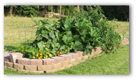 summer vegetable garden planning tips pictures and ideas