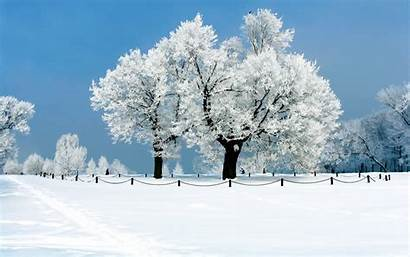 Snow Backgrounds Winter Desktop Background Wallpapers Landscape