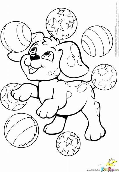 Coloring Pages Puppy Dog Teacup Cat Realistic