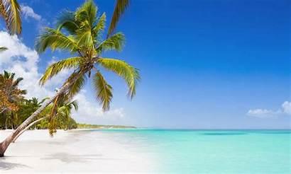 Urlaub Strand Karibik Sonne Meer Palme Republik