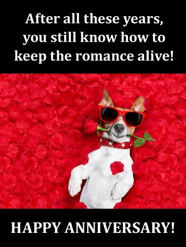 romantic doggy funny anniversary card birthday