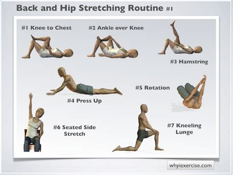 First rate leg hip and back stretches reviews