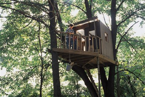 How To Build The Best Treehouse-daily Parent