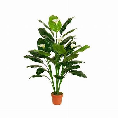 Plants Plant Floor Fake Peace Lily Artificial