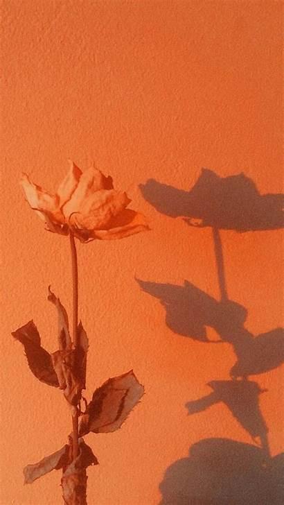 Aesthetic Orange Wallpapers Peach Pastel Naranja Backgrounds