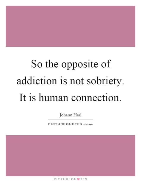 So The Opposite Of Addiction Is Not Sobriety It Is Human
